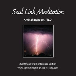 soul link meditation cd
