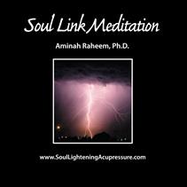 Soul Link Meditation
